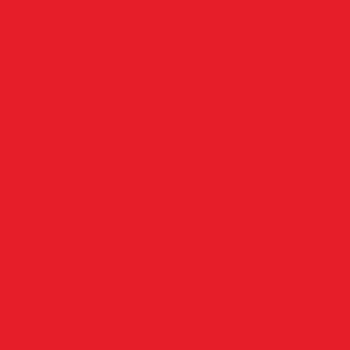 NANDI-TOYOTA LOGO